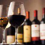 ワインレッスンは6歳から。イタリアの新事情。