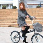 自転車の信号無視に最高5万円の罰金を科す可能性が出ていることに対する海外の反応