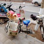 宅配中に荷物を守る犬