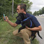「ポケモンゴー」をしながらデジタルモンスターを狩ることが犬の散歩に生かされています。