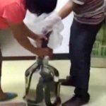 【閲覧注意】中国のヘビ酒の造り方が残酷すぎると世界が批判!