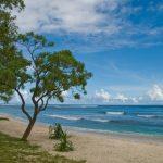 マグニチュード6.9の地震が南太平洋のバヌアツ島で発生しました。