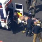 ミランダ・カーの警備員がオーストラリア人の男に刺され、その男は逮捕されました。