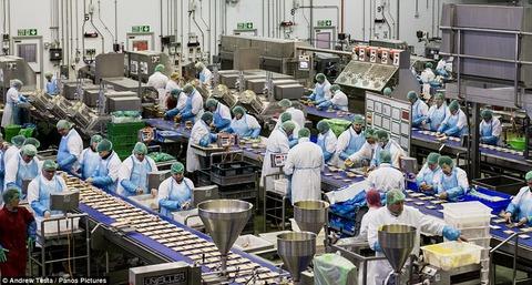 サンドイッチ工場